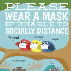 politely adirondack covid safety animal posters